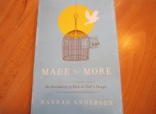 made for more hannah anderson book