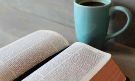NIV First-Century Study Bible — Kent Dobson