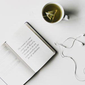 scribe bible journal