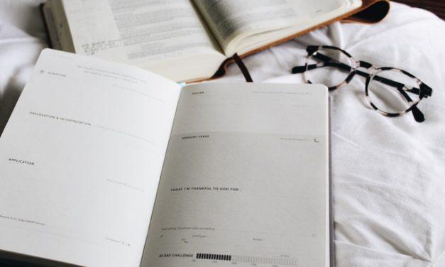 Scribe Bible Journal, A First Look Inside