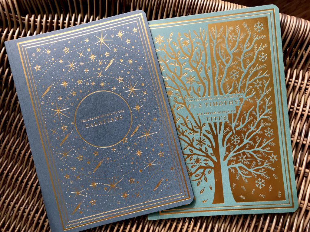 ESV Illuminated Scripture Journal Review - Brave Daily